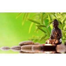 Ülő buddha és bambusz vászonkép
