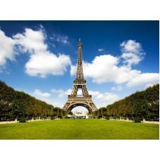 A Párizsi Eiffel-torony és a park fényképe