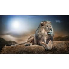 Pihenő oroszlán vászonkép