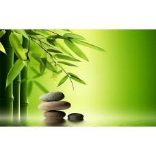 Zen kövek és bambusz falikép
